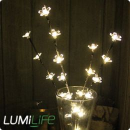 flower branch light