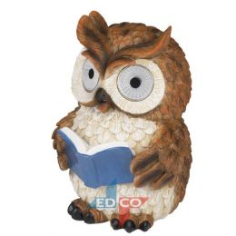 905433 medium owl reading book